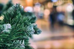 Gröna visare på gran, sörjer filialer Abstrakt suddig feriecolorfurbakgrund med Bokeh Selektivt fokusera Vinter Royaltyfri Foto