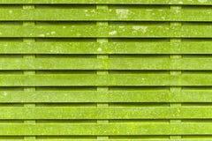 Gröna wood paneler Royaltyfri Bild