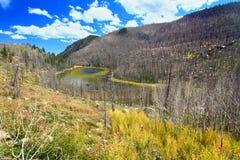 Gröngöling sjö Rocky Mountains Colorado Arkivfoto