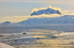 Grönland-Fjord mit Treibeis stockbild