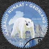 GRÖNLAND - 2014: Showeisbär, Pole-zu-Pole lizenzfreie stockfotos