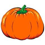 Grönsak för allhelgonaaftonStålar-nolla-lykta isolerad orange pumpa vektor illustrationer