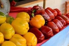 Grönsak för full färg Arkivfoton