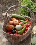 grönsak för korg s arkivbilder