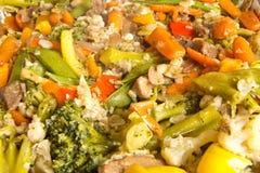 grönsak för nötköttsmåfiskstir royaltyfri bild