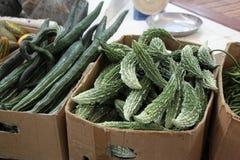 grönsak för nizwaoman souq Arkivfoton