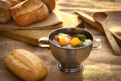 grönsak för soup för fokusmakro grund Royaltyfria Foton
