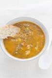 grönsak för soup för fokusmakro grund Royaltyfri Bild