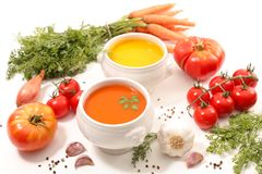 grönsak för soup för fokusmakro grund royaltyfri fotografi
