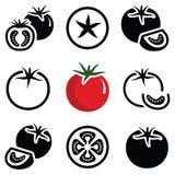 grönsak för tomat för samlingsfruktsymbol Arkivbild