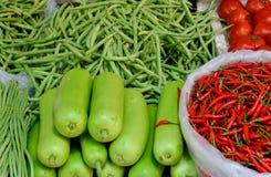 Grönsak i grönt och rött Fotografering för Bildbyråer
