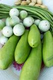 Grönsak i maträtt Arkivbild