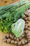 grönsak med den avfyrade tofuen Royaltyfri Fotografi