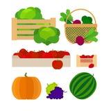 Grönsak- och fruktlantgårdkorgar Arkivbilder