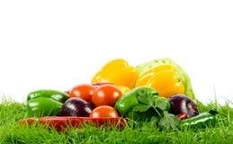 Grönsak på gröna gras på isolerad sund matnäring för vit bakgrund Royaltyfri Foto