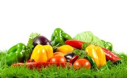 Grönsak på gröna gras på isolerad vit bakgrund Arkivbild