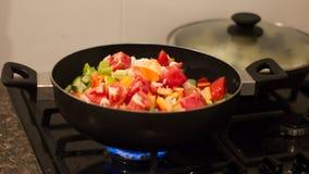 Grönsak Stew Fotografering för Bildbyråer