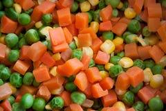 Grönsakblandning Fotografering för Bildbyråer