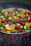 Grönsakblandning som är förberedd på ett galler Royaltyfri Bild