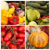 Grönsakcollage Fotografering för Bildbyråer