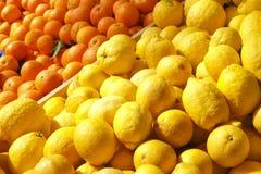 Grönsaken för frukt för vårsommardetoxen bantar Slut upp av skördhögen Supermarketställning av den rena och skinande grönsak-/fru royaltyfria bilder