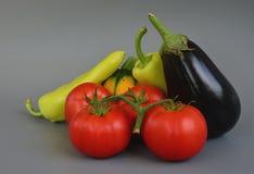 Grönsaker 25 Royaltyfri Fotografi
