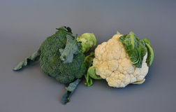 Grönsaker 37 Royaltyfria Bilder