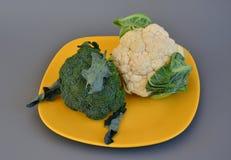 Grönsaker 58 Fotografering för Bildbyråer