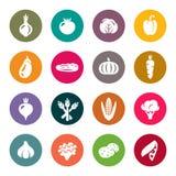Grönsaker royaltyfri illustrationer