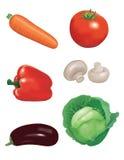 grönsaker för 1 samling Arkivfoton