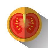grönsaker för grönsak för tomat för produce för gurkamat vita nya sunda vektor illustrationer