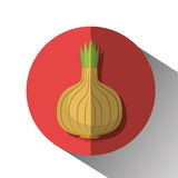 grönsaker för grönsak för tomat för produce för gurkamat vita nya sunda royaltyfri illustrationer