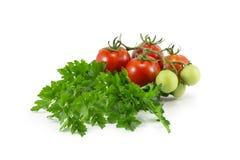 Grönsaker för matlagning Royaltyfri Foto
