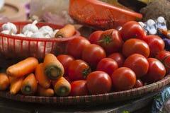 grönsaker för ny trädgård för bakgrund vita blandade Arkivbilder