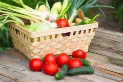 Grönsaker för organisk mat i en korg på en naturlig bakgrund Royaltyfri Foto