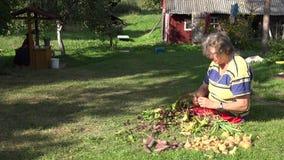 Grönsaker för rödbeta för hög landskvinnaprocess nya i lantlig husgård 4K arkivfilmer