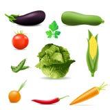 grönsaker för vektor för symbolsillustration set vektor illustrationer