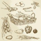 Grönsaker - hand dragen samling Arkivbild