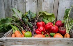 Grönsaker i en ask Arkivfoton
