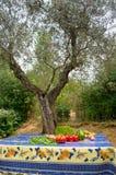 Grönsaker i fransk trädgård Arkivbild