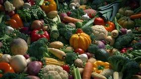 Grönsaker i konstnärlig skärm arkivfilmer