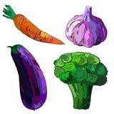 Grönsaker illustration Fotografering för Bildbyråer