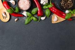 Grönsaker, nya örter, varma kryddor och bohag Arkivbild