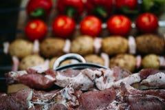 Grönsaker och kött är klara för att laga mat Royaltyfria Bilder