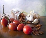 Grönsaker och kryddor Arkivbilder