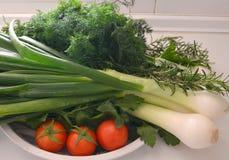 Grönsaker och matlagningörter Fotografering för Bildbyråer