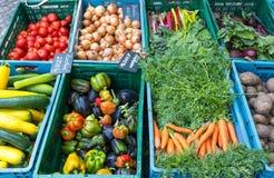 Grönsaker och sallad på en marknad royaltyfri fotografi
