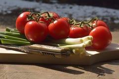 Grönsaker på dagljus Royaltyfria Foton