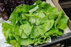 grönsaker på en lokal lantlig marknad i sommarmånaden juli av staden arkivfoton