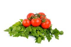 Grönsaker på en vitbakgrund Royaltyfria Foton